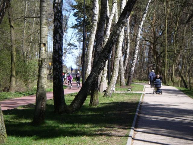 park.jpg -